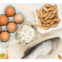 Curso de Alérgenos en la Industria Alimentaria